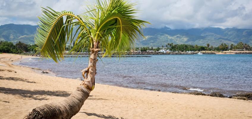 Desconectando en vacaciones… o no tanto